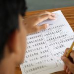 EdTalk | Stepping stones to firm foundations for Mandarin as a foreign language